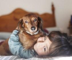 Gehören Tiere in das Bett?